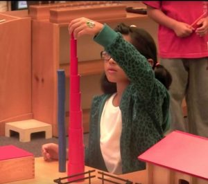 Knobless Cylinders Montessori Education Program Sensory Activity