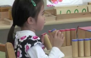 Sound Cylinders Montessori Program Education Sensory Activity