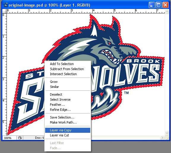 Photoshop Layer Via Copy Tool Screen Printing