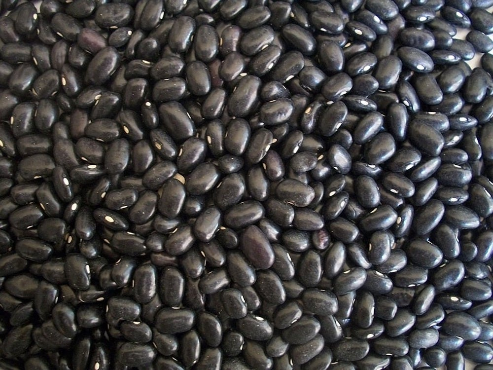 Black Beans Superfood Should Be Eaten Daily