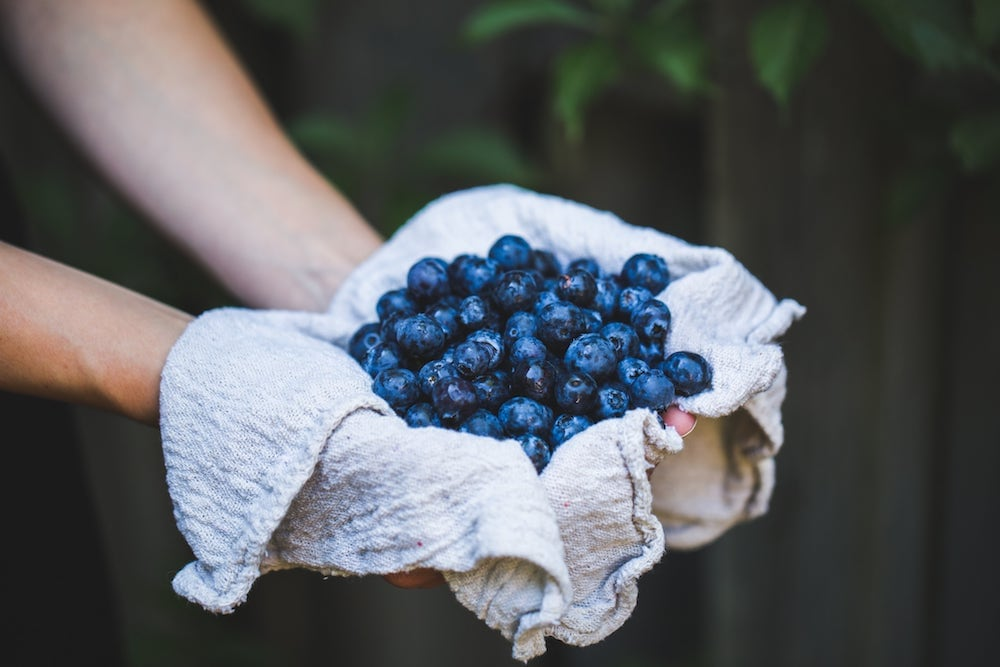 Blueberries superfood to be eaten daily